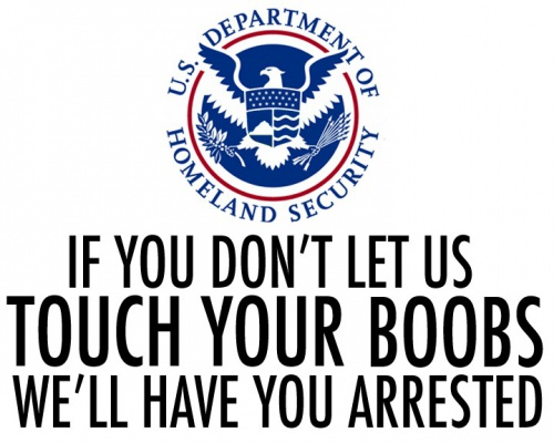 Say NO to the TSA. Opt out of the porno-scanner